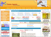 AP Estate Agency